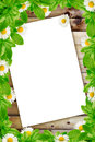 Frame daisies on the wooden background and white paper empty Royalty Free Stock Photography