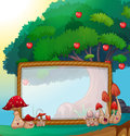 Frame Design With Mushrooms An...