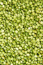 Frame filled raw green lentils Royalty Free Stock Photography