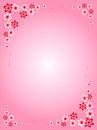 Frame of flowers, pink, red, pink background, colorful, different flowers, interesting ideas for valentines, cards, for any holida