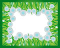 Frame of fluffy dandelion flowers for a photo or birthday card or special occasion congratulation Royalty Free Stock Image