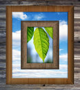 Frame in frame small photo isolated on large with wooden background Stock Photography