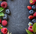 Frame  of fresh  wild berries with green  leaves Royalty Free Stock Photo