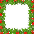 Frame of holly twigs with red berries Stock Images