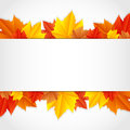 Frame with leaves vector autumn Stock Images