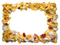 Frame made of rose leafs Stock Photo