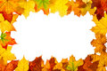 Frame of maple autumn leaves Royalty Free Stock Photo