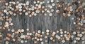 Frame Money Coins Background