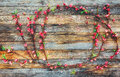 Frame From Peach Branches With...