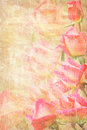 Frame from pink roses grunge Royalty Free Stock Photo