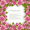 Frame from pink roses with a place for text Stock Image