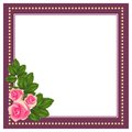 Frame with pink roses square and white background Stock Images