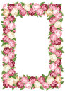Frame with pink and white vintage roses Royalty Free Stock Images
