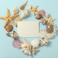 Frame of Plenty different seashells on a blue background. Seaside themed backdrop for travel agency template advertising Royalty Free Stock Photo