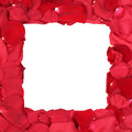 Frame from roses on birthday, Valentine's and mothers day with c Royalty Free Stock Photo
