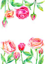 Frame of a roses branches.Floral wreath.