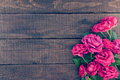 Frame of roses on dark rustic wooden background. Spring flowers. Royalty Free Stock Photo