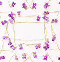 A frame of small forest flowers purple violets on white background with space for text