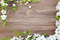Frame of spring flowers on a wooden background Royalty Free Stock Photo