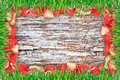 Frame of strawberries and grass and wooden background Royalty Free Stock Image