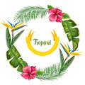 Frame with tropical leaves and flowers. Palms branches, bird of paradise flower, hibiscus Royalty Free Stock Photo