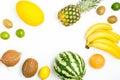 Frame watermelon, pineapple, grapefruit, coconut, kiwi, lime, le Royalty Free Stock Photo