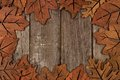 Frame of wooden autumn leaf decor Royalty Free Stock Photo