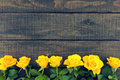 Frame of yellow roses on rustic wooden background. Valentine's D Royalty Free Stock Photo