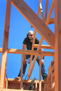 Framer balances on wall a carpenter standing balancing a working looking down through the trusses of a house that is under Royalty Free Stock Photo