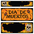 Frames with sugar skull of floral background mexican and flowers Royalty Free Stock Image
