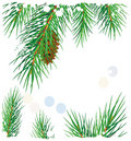 Framework with pine branches Royalty Free Stock Image