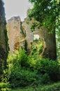 France, Abri de la Madeleine troglodytic site in Tursac Royalty Free Stock Photo