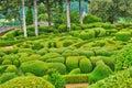 France, picturesque garden of Marqueyssac in Dordogne Royalty Free Stock Photo