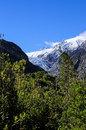 Franz josef glacier south island new zealand Royalty Free Stock Image