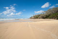 Fraser island beach beautiful long beach lined by the bush and sea Royalty Free Stock Photography