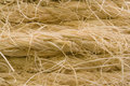 Frayed rope Royalty Free Stock Photography