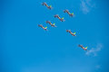 Frecce Tricolori Tricolour Arrows at Pisa Airshow, Italian National Acrobatic PAN Royalty Free Stock Photo