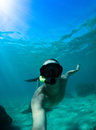 Free diver coming to surface Stock Photography