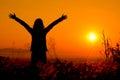 Free happy woman enjoying nature sunset. Freedom, happiness Royalty Free Stock Photo