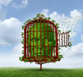 Free the mind freedom of concept as a tree in shape of a human head trapped by branches shaped as an open birdcage or bird cage Stock Images