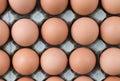 Free range eggs Royalty Free Stock Photo