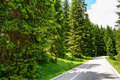 Free Road among Beautiful Forest in the National Park Durmitor, Montenegro Royalty Free Stock Photo
