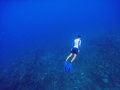 Freediver underwater in deep blue sea. Snorkeling man dives up to water surface.