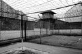 Freedom behind barbed wire and brick walls a black white image of security facilities from the prison area Royalty Free Stock Images