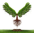 Freedom potential and the power of determination as a business and life concept with a green tree growing open wings and flying Royalty Free Stock Photo