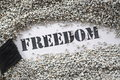 Freedom -- treasure word series Stock Photo