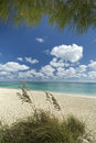 Freeport beach grand bahama island bahamas Royalty Free Stock Photos