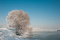 The freezing river in russia Stock Images