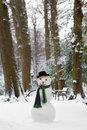 Freezing snowman standing in the park wearing a hat Royalty Free Stock Images