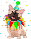 French bulldog's Birthday Royalty Free Stock Images